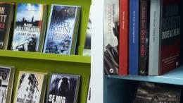 Slesvig Bibliotek
