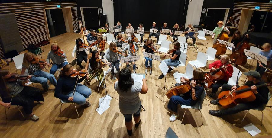 Københavns Musikskoles Kammerorkester