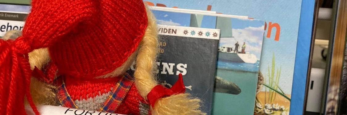 Nissen elsker at læse bøger - på hylden
